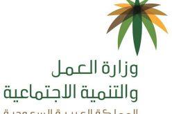 وزارة العمل تحدد موعد صرف المعاشات ومبالغ الغذاء ودعم الكهرباء