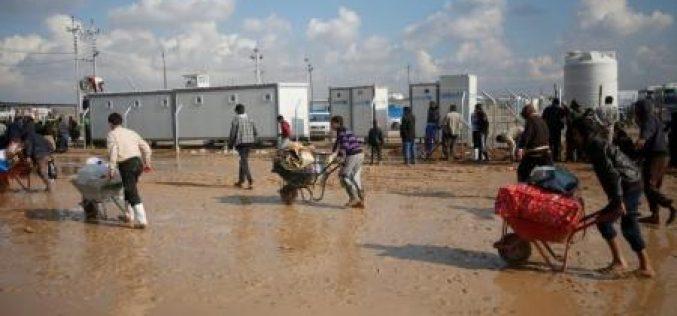 فرار أكثر من 2000 عراقي يوميا من الموصل