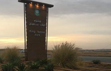 بالصور .. منتزه الملك سلمان البري شمال الرياض يزدحم مع الأجواء الربيعية