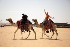 """""""ناشيونال جيوغرافيك"""" تصدر مطبوعةً عن الإبل السعوديَّة"""