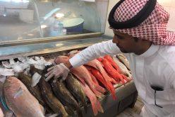 """""""البيئة"""" تؤكد سلامة أسماك الخليج العربي من التغييرات السلبية"""