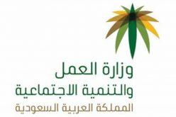 """العمل والتنمية تتيح للسوريين إصدار وتجديد إشعار العمل المؤقت عبر """"أجير"""""""