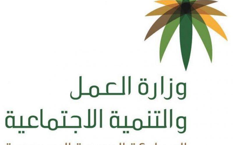 وزارة العمل تتيح خدمة المحادثة الفورية لمستفيدي الضمان الاجتماعي