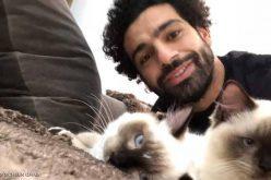 #محمد_صلاح يعلق على أخبار تصدير الكلاب والقطط من مصر !